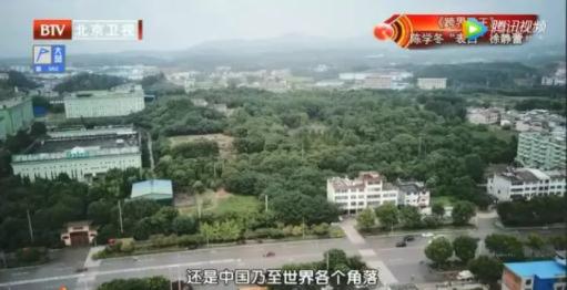 北京卫视《养生堂》带您走进李时珍医药集团